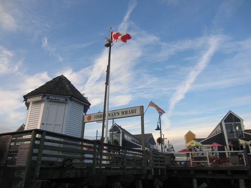 Paisagem com bandeira do canadá